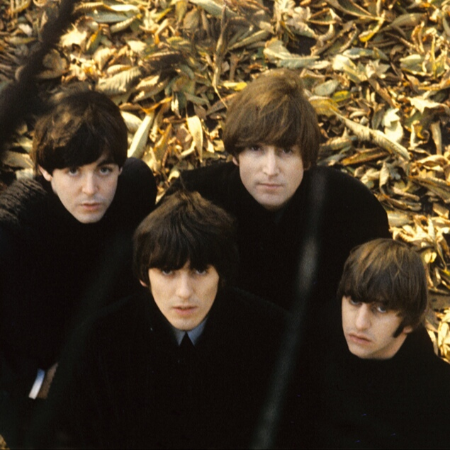 Band Special Beatle Wigs Beatle Style